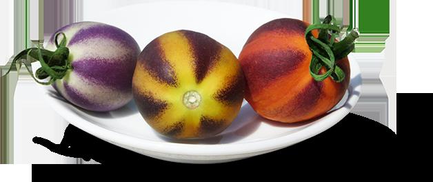 Tomato Colors